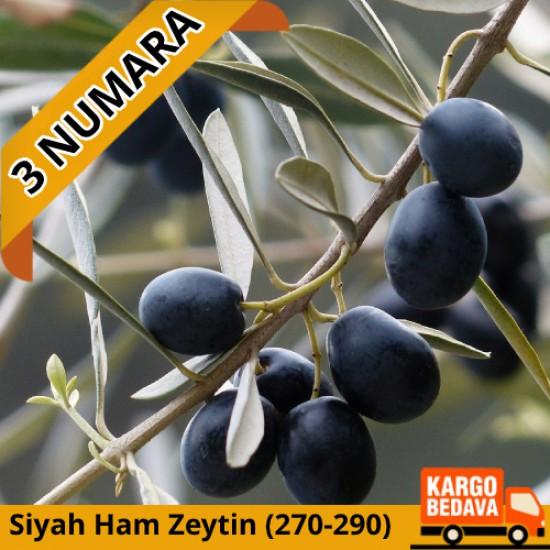 3 Numara Ham Siyah Gemlik Zeytini 10 kg