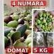5 kg 4 Numara Yeşil Ham Domat zeytini-5kg