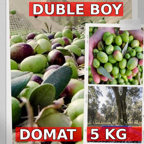 5 kg Duble Yeşil Ham Domat zeytini