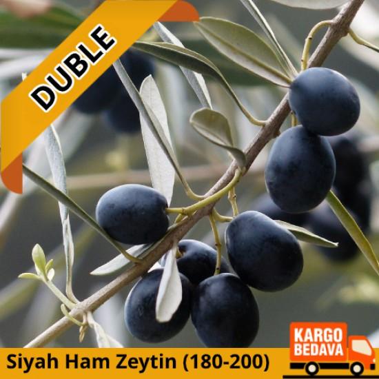 DUBLE BOY Ham Siyah Gemlik Zeytini 10 kg