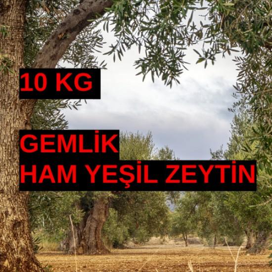 10 kg Gemlik tipi Ham Yeşil Zeyin